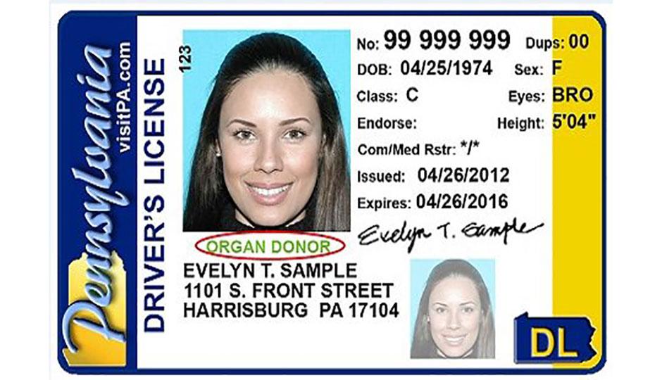state ids